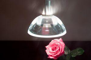 Lampade a sospensione in cucina